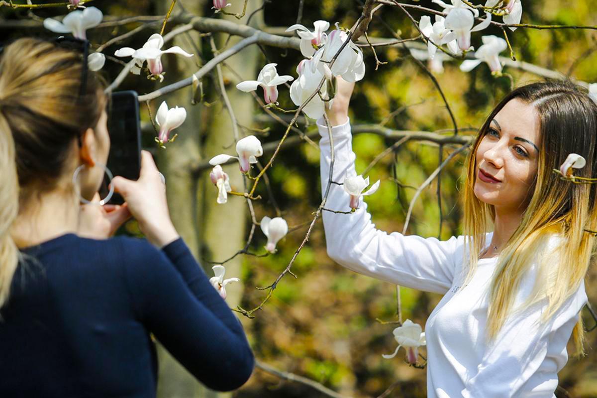 Все цветет и пахнет: 11 самых цветущих мест этой весны в Украине|В дороге - сайт о путешествиях и приключениях
